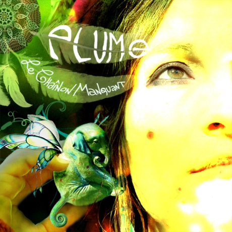 PLUME-Cover