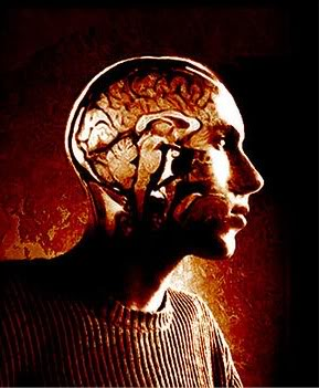 brainmetaphor