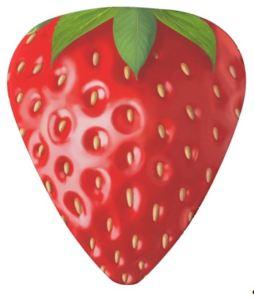 Strawberry vine mediator