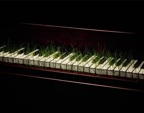 Piano with grass